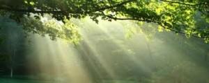 lumiére solaire